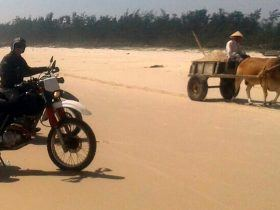 vietnam motorcycle tours hoi an to Ho Chi Minh city 1